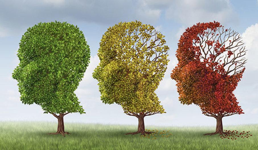 Prevenção das Demência
